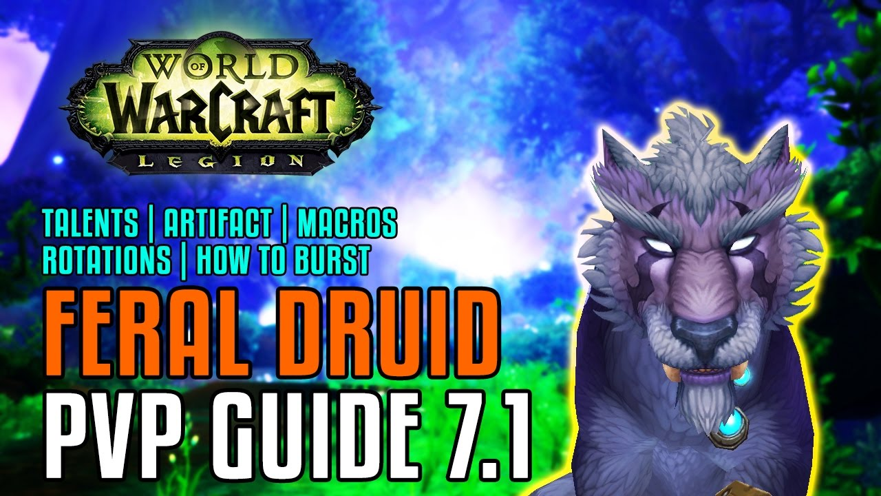 Wow Legion 7 1 Feral Druid Pvp Guide Talents Artifact Pathing Macros Stat Priority Rotations Youtube