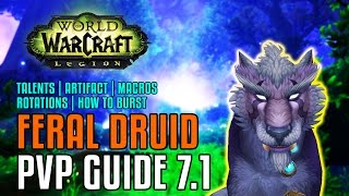 WoW Legion 7.1: Feral Druid PvP Guide - Talents, Artifact Pathing, Macros, Stat Priority, Rotations
