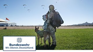 Der fliegende Hund des KSK – Spezialkraft der Bundeswehr auf vier Pfoten