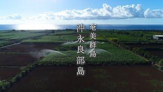畑地かんがい short ver.(奄美群島・沖永良部島)