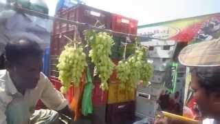 Grapes fruit seller in Indian street