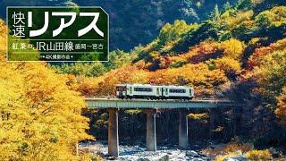 快速リアス 紅葉のJR山田線 サンプルムービー