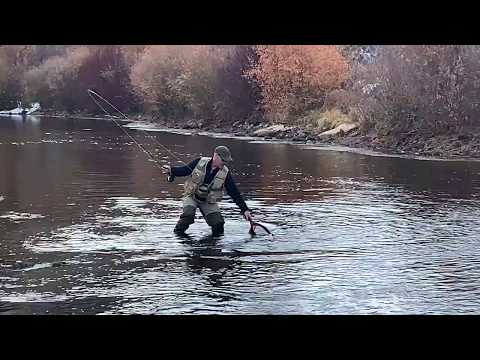 Ice On The River | Weber River Fly Fishing