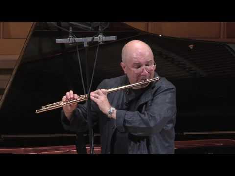Ion Bogdan Stefanescu W.A.Mozart Eine kleine nacht musik