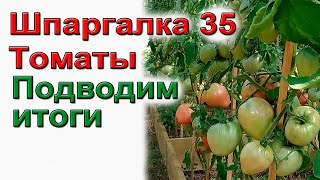 ШПАРГАЛКА  35 Подводим итоги урожая томатов 2021