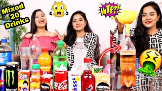 I Mixed 20 DRINKS Together and DRANK It | Drinking Challenge Gone Wrong | Nilanjana Dhar