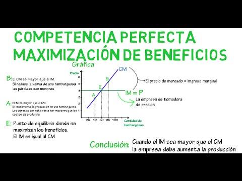 macroeconomia mankiw capitulo 4 diabetes diapositivas
