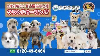 2015年2月28日(土)、ペットショップCoo&RIKU名古屋みなと店がグランド...