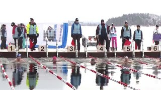 These Swimmers Love Bone-Chilling Arctic Temperatures thumbnail