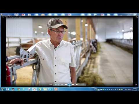 Lely | Hosted by Good Vue Farms, Goodridge, Minn