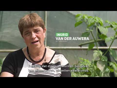 Tournée Provinciale over de Zomer van de Korte Keten from YouTube · Duration:  8 minutes 13 seconds