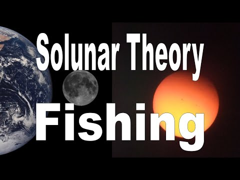 Solunar Period And Fishing