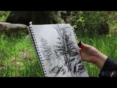 DRAWING with REAL CHARCOAL from the FIRE - The Poor Man's Pencil - Let's Draw a Landscape Drawing