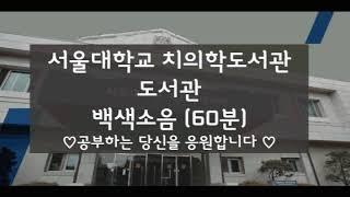 서울대학교 치의학 도서관 ASMR 백색소음
