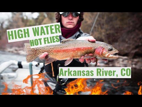 High Water Hot Flies!