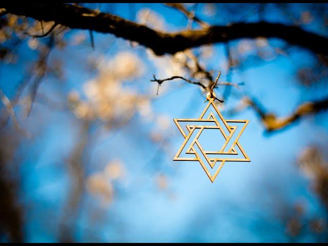 "Harry's Video Blog - ""Hi, I'm Jewish:"" Parshat Shemot"