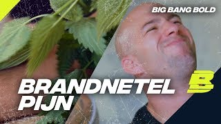 NIELS SPUUGT OP JAYJAY?! | BIG BANG BOLD - Concentrate BOLD