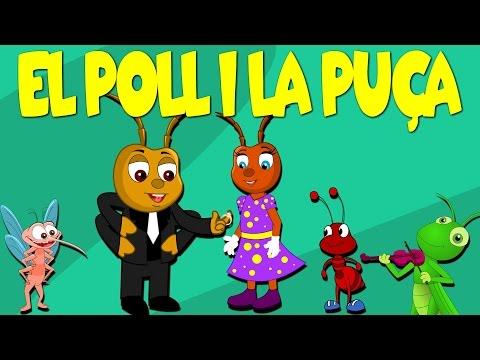 El poll i la puça es volen casar | Canciones Infantiles en Catalan