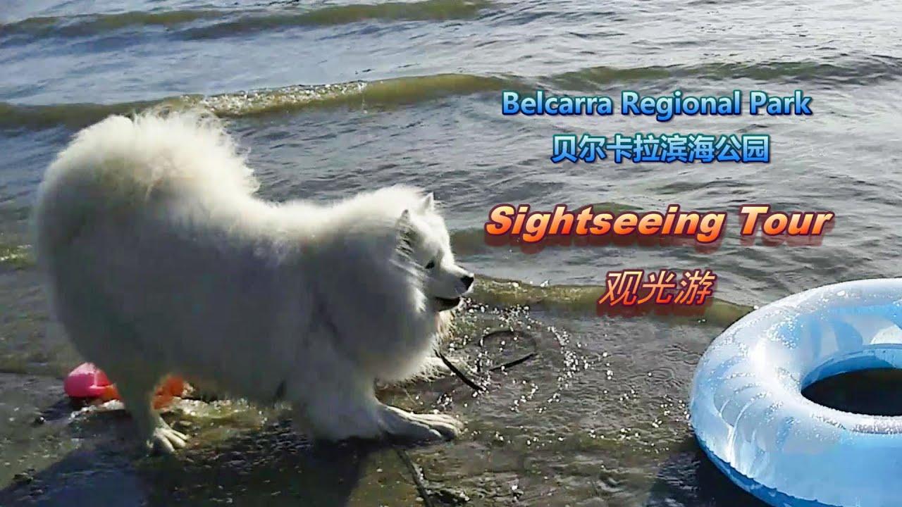 Boating\Swimming\Fishing\Big Crab\Belcarra Regional Park Sightseeing Tour [I am Senba (93)]