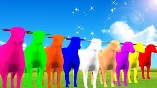 Sheep ColorFul Color Song For Children || Kids Songs 3D Animation English Rhymes For Child
