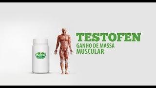 O que é Testofen? Aumente a testosterona, ganho de massa muscular e força 100% Natural