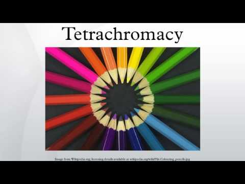 how to know if i am a tetrachromat