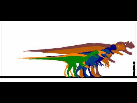 Ceratosaurid Size Scale.wmv