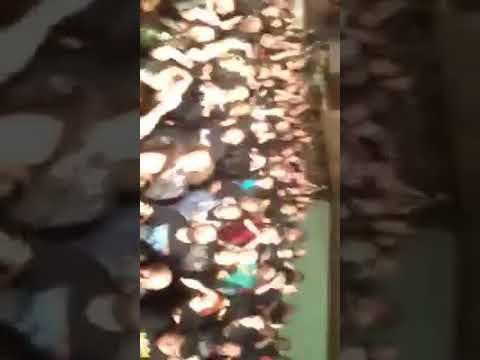 GARAGEDAYS - Live in Germany