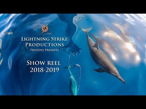 4K Underwater Wildlife and Aerial Show Reel 2018-2019 Palau and Kiribati.