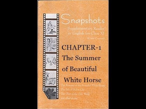 Chapter 1-the summer of beautiful white horse (SNAPSHOTS)