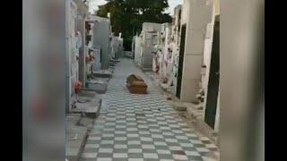 Por $70.000, familia de difunto dejó el ataúd tirado en el cementerio y se agarró