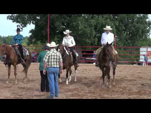 AVA 2012 Missouri Foxtrotter-  The New Yorker -Gerti Merk