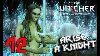 THE WITCHER. Part 12: Lady of the Lake, Berengar's Destiny (movie-walkthrough, graphic mods)