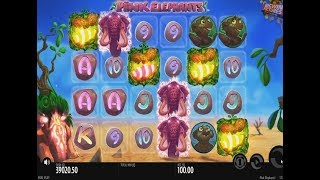 Pink Elephant Slot - 100EUR Bet Free Spins - Big Win Or Fail