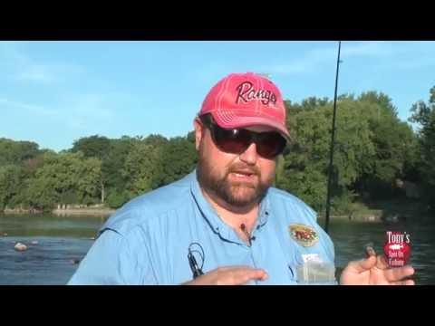 Fox River Smallmouth Bass