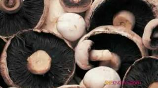 Mushrooms Fight Cancer
