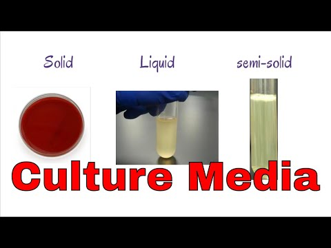 what is Culture media || different classification of culture media || Microbiology