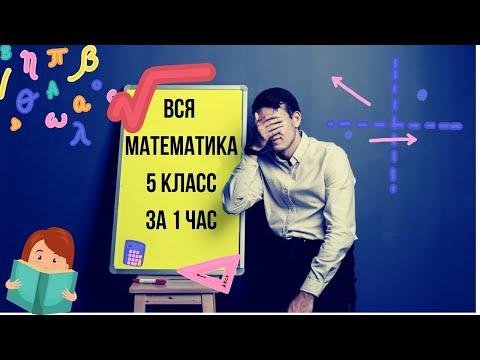 Вся математика 5 класс за 1 час.