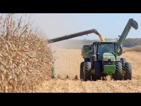 Farming Feeds ALABAMA - General Agriculture