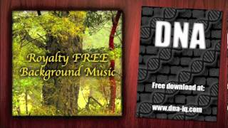 Complicated Melody - Royalty Free Background Music