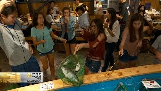 Tokyo restaurant allows customers to catch own fish