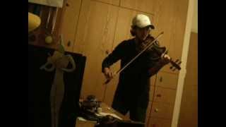 Fade To Black - Metallica // Apocalyptica (violin cover)