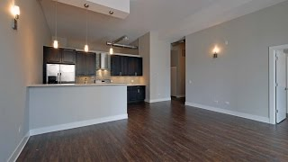 New luxury lofts in a great South Loop location