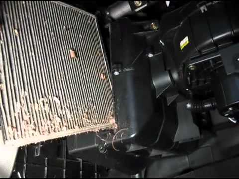 Dirty Cabin Air Filter Hall Of Shame