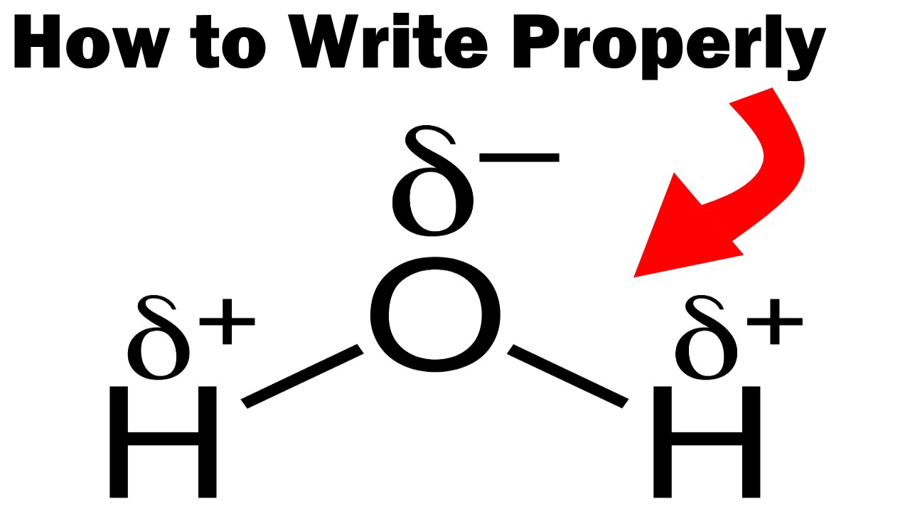 How to write h20 creative book report printables