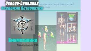 Обучение Остеопатии. Биомеханика.