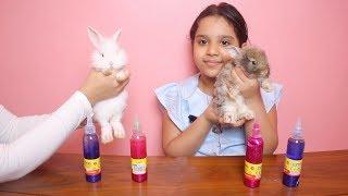 تحدي أرانبنا يختاروا مكونات السلايم !!! Our rabbits Pick Our Slime Ingredients Challenge !!!