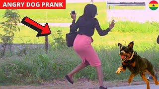 She Dropped Her Bag! Fake Angry Dog Prank!