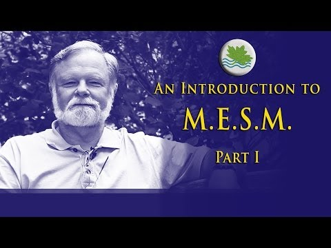 Intro to M.E.S.M., Part I