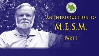 Intro to M.E.S.M., Part I